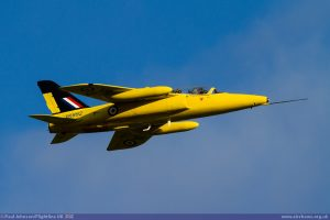 Gnat Display Team
