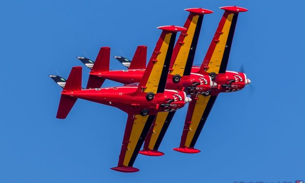 AIRSHOW NEWS: Belgian Air Force Red Devils Display Schedule 2020